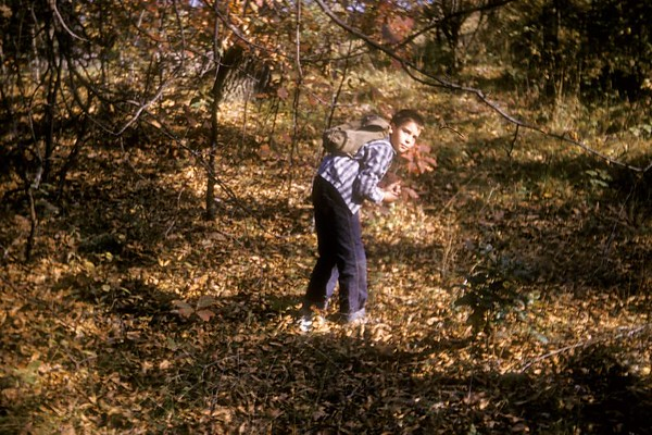 1961 Summer Fall