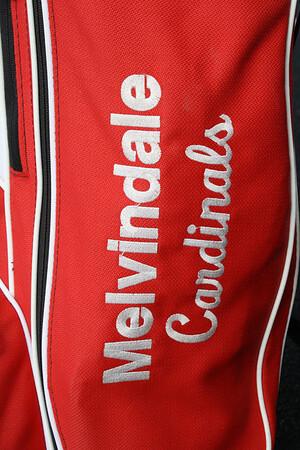 Melvindale High School Golf 2009