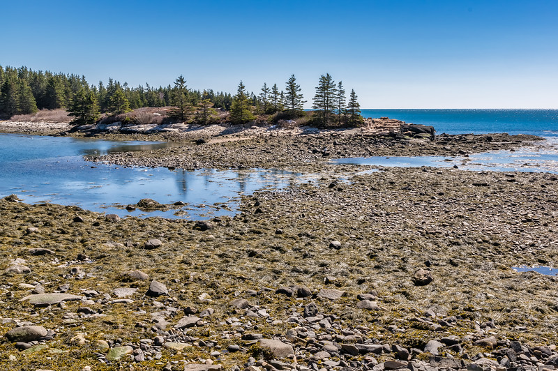 Schoodic Loop Road Toward Buck Harbor 2nd View 3-31-18