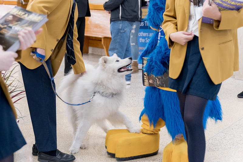20200125 - Open House for Accepted Candidates (Class of 2024) - 124