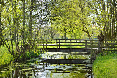Small bridge in Stochemhoeve park in Leiden, the Netherlands
