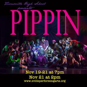 Pippin Media