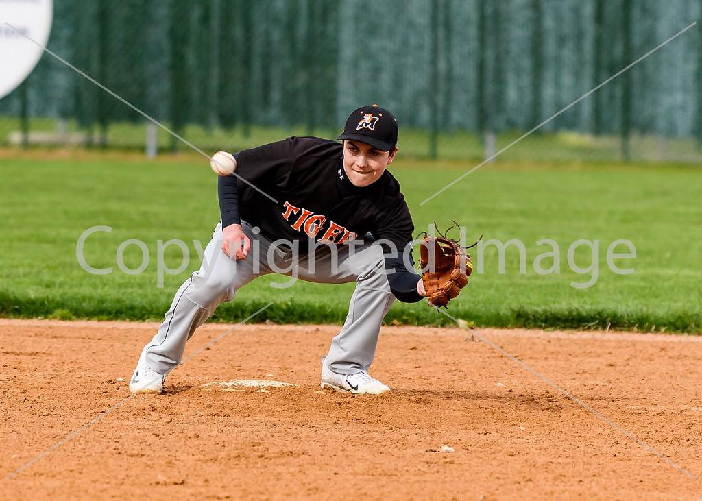 Marshfield JV Baseball 2016-17
