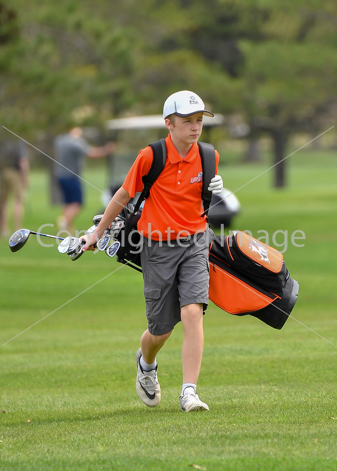 Marshfield Golf 2017