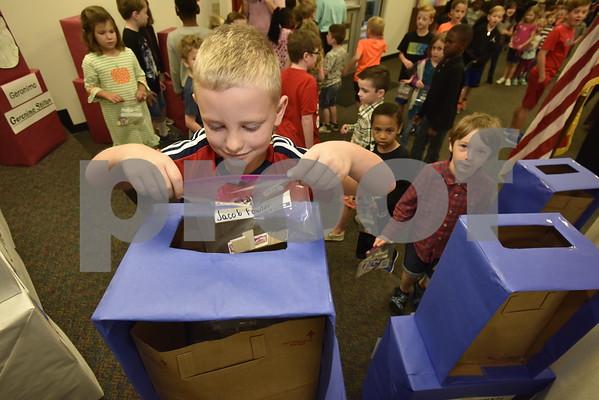 Rice Elementary Voting