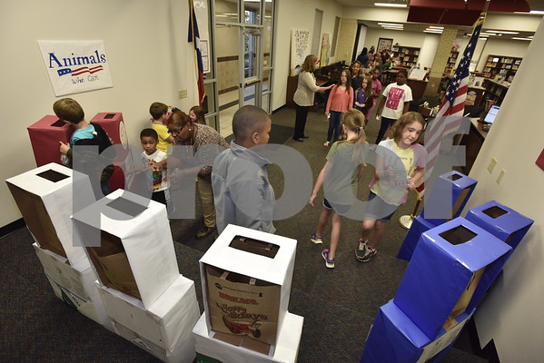 Rice Elementary Voting