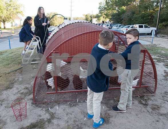 All Saints Episcopal School first grader Srikari Katta, 6, teacher Michelle  Ashbreck, and students Noah Chandler, 7, and Kingston Sinclair, 7 work with the school's chicken coop Tuesday Oct. 17, 2017. The private school in Tyler has started a Lower School Learning Farm complete with several varieties of salad green and soup green as well as egg laying hens.  (Sarah A. Miller/Tyler Morning Telegraph)