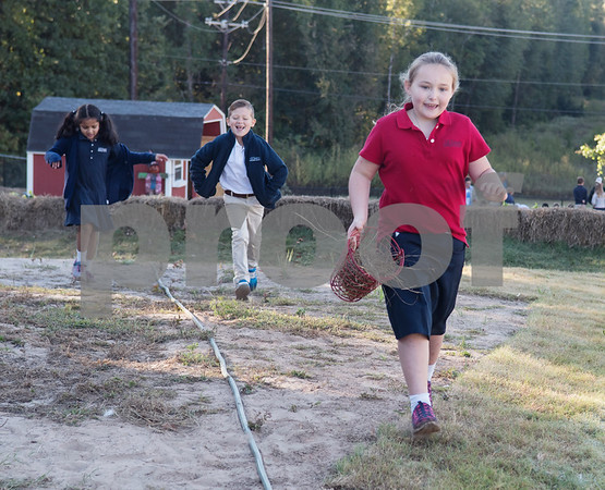 All Saints Episcopal School first graders Srikari Katta, 6, Noah Chandler, 7, and Hadley Walden, 6, gather clean hay to replace dirty hay in the school's chicken coop Tuesday Oct. 17, 2017. The private school in Tyler has started a Lower School Learning Farm complete with several varieties of salad green and soup green as well as egg laying hens.  (Sarah A. Miller/Tyler Morning Telegraph)