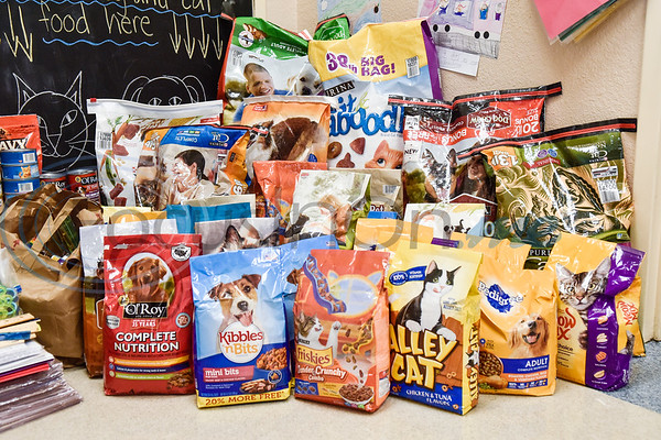 Dog and cat food donations outside of an art class at Caldwell Arts Academy in Tyler, Texas, on Monday, Oct. 22, 2018. The students made paintings to go with donations to those affected by Hurricane Michael. (Chelsea Purgahn/Tyler Morning Telegraph)