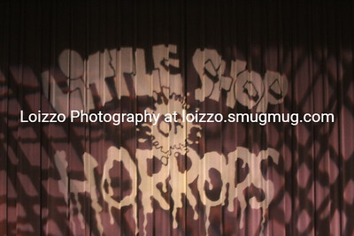 2012-11-01 School - Little Shop of Horrors gallery 1