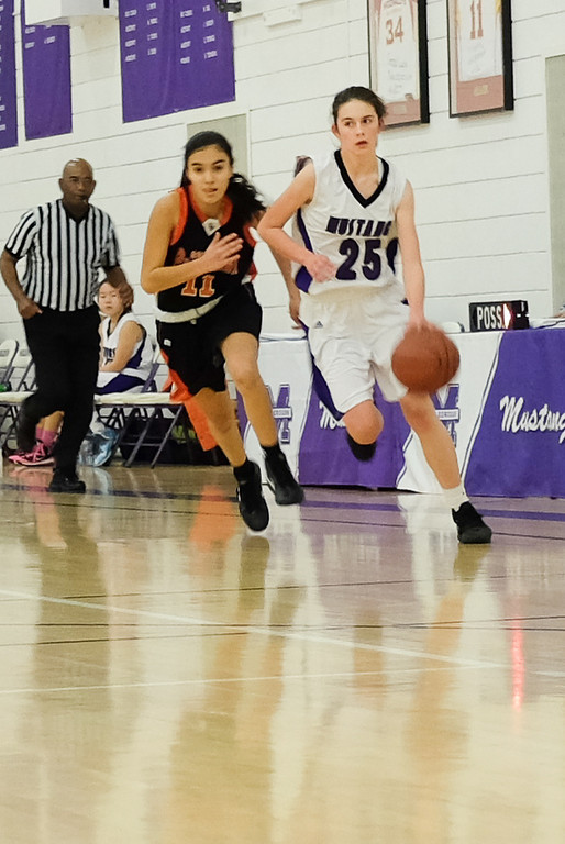 2014.1.4 JV Basketball