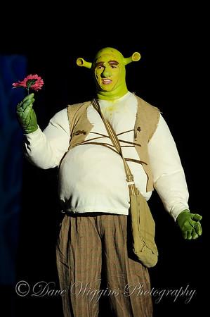Shrek the Musical - November 14 2015