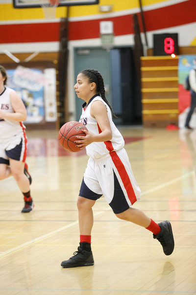RCS-LadyEagles-Basketball-Jan-2017-007