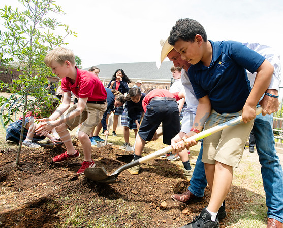 Jeff Tuley of the Tyler Trees Committee assists St. Gregory student Christian Norwood, 10, with a shovel as they work to plant a tree at the St. Gregory Cathedral School playground in Tyler on Tuesday April 16, 2019. The fifth grade classes planted and dedicated two Live Oak trees to their school.   (Sarah A. Miller/Tyler Morning Telegraph)