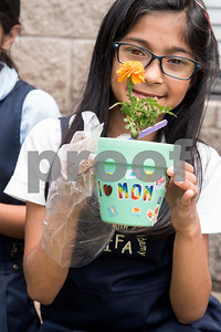 Third grader Saalika Qureshi, 9, shows off the potted marigold flower she made for her mother for Mother's Day during class at Islamic Faith Academy in Tyler Tuesday May 9, 2017. Mother's Day in Sunday May 14.   (Sarah A. Miller/Tyler Morning Telegraph)