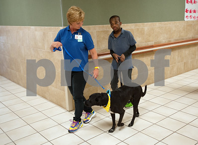 photo by Sarah A. Miller/Tyler Morning Telegraph   Boshears student Alex Allen, 16, walks Therapet dog Bonnie with assistance from Therapet volunteer Glenda Lindekugel during class Thursday June 26, 2014 at the school in Tyler. Therapet Animal Assisted Therapy partners with the Wayne D. Boshears Center for Exceptional Programs by bringing its animals to the school and working with the students who have varying special needs.