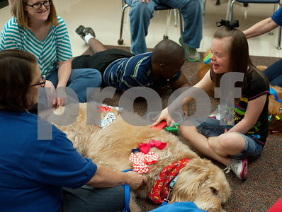 photo by Sarah A. Miller/Tyler Morning Telegraph   Boshears student Katie Kannard, 17, brushes Therapet dog Murray's hair and decorates him with hair bows during class Thursday June 26, 2014 at the school in Tyler. Therapet Animal Assisted Therapy partners with the Wayne D. Boshears Center for Exceptional Programs by bringing its animals to the school and working with the students who have varying special needs.