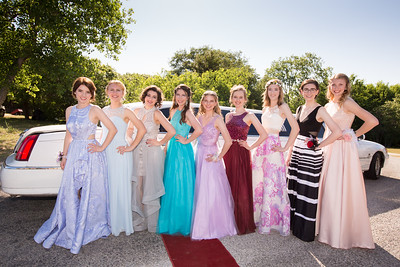 Alyssa Bobalik, Michaela Mott, Kelly Marshall, Kelsey Basler, Elissa Tatum, Kristen Tatum, Brooke Byles, Sarah Duncan and Courtney Andrews pose for pictures before taking a limousine from a Deer Creek residence to Promenade.