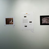 3 of my pictures displayed with others