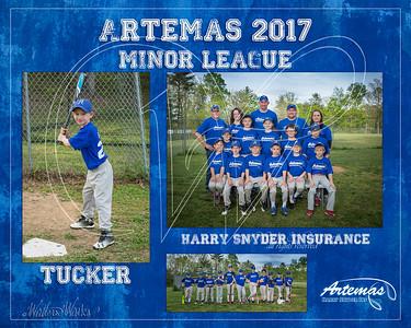 TM T3 Minor Blue Tucker