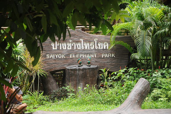 June 30 - Bankok - River Kwai - Elephant Ride