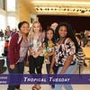 TropicalTuesday_KeepitDigital_212
