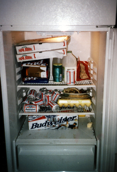 Only the essentials in our fridge