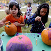 Allison Cepull, left, and Ashley Lujan, paint pumpkins during the garden harvest celebration.<br /> This year's  Columbine Elementary  garden harvest event celebrated the students' work and learnings in the garden. Participants had healthy food, made  artwork for the garden, painted pumpkins and enjoyed being together as a school community.<br /> Cliff Grassmick  / October 20, 2012