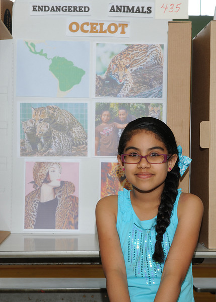 Adriana Padilla, 9, shows off her endangered animals display at the 20th Annual Science, Math and Technology Fair at Crocker Elementary School on Tuesday.