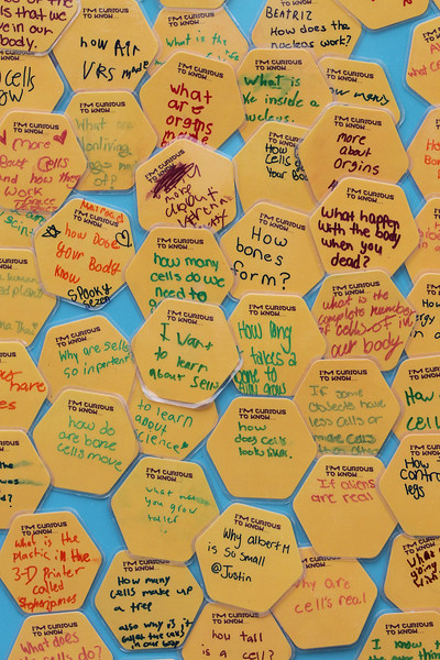 MilliporeSigma's mobile science lab, the Curiosity Cube, visits the Moody Elementary School in Lowell. Some of the questions left on a magnetic board by Moody students. (SUN/Julia Malakie)