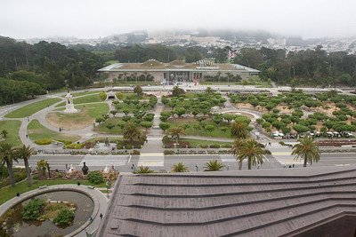 From the observation floor, it's possible to have a fine view of the California Academy of Sciences.