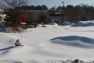 Some of us stayed at the Hampton Inn in White River Junction, VT.  There was definitely snow for Winter Carnival.
