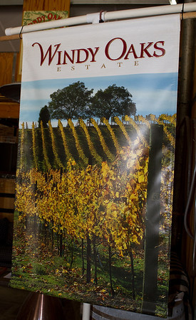 Windy Oaks Winery's poster featuring one of their many stunning vineyard views.
