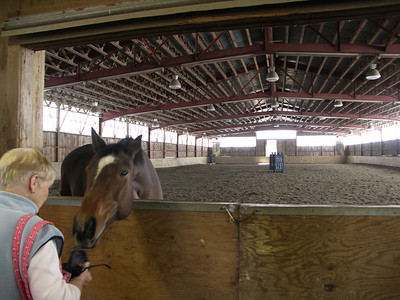 The indoor riding arena with a happy occupant.