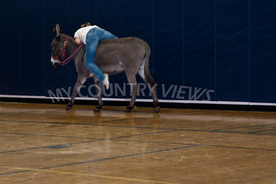 2009 Donkey basketball-70