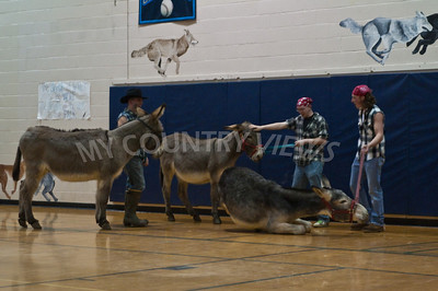 2009 Donkey basketball-37