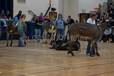 2009 Donkey basketball-40