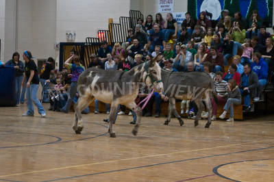 2009 Donkey basketball-28