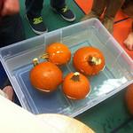 First Grade 2012-2013