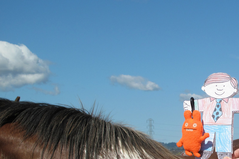 Flat Stanley and a really big horse.