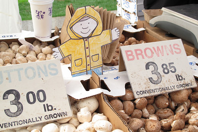 Flat Stanley buying mushrooms at the Farmers Market