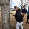 Greater Lowell Tech students tap sugar maples to collect sap to make maple syrup, as part of their environmental science class. Senior Kailey Murphy, 18, of Dracut, drills a hole in a sugar maple for a tap. Watching are senior Jacob Benoit, 17, of Lowell, left, and senior Janathan Dailey of Dracut, front right. (SUN/Julia Malakie)