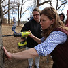 Greater Lowell Tech students tap sugar maples to collect sap to make maple syrup, as part of their environmental science class. Teacher Tara Alcorn of Dunstable show senior Kailey Murphy, 18, of Dracut, what angle to drill a hole in a sugar maple for a tap. (SUN/Julia Malakie)