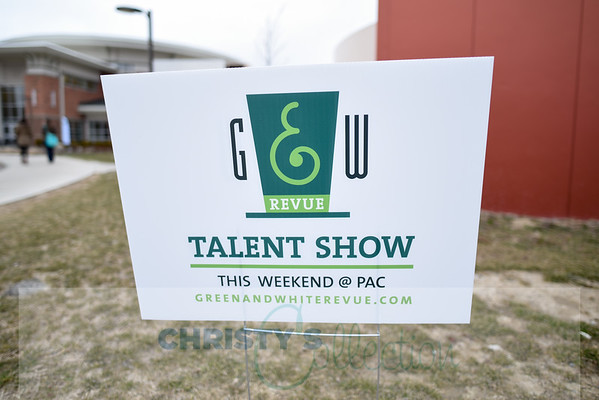 Green & White Revue 2015 (still shots)