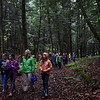 Kayla Rice/Reformer<br /> Jennifer Kramer's sixth grade class from Guilford elementary school walks through Andrew Weeks forest in Guilford after spending part of their school day out in nature on Wednesday morning.