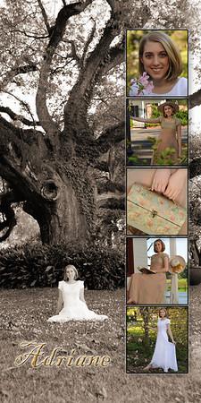 Adriana 10x20 6 photo revised