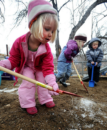 """Neva Upton, left, Isabel Link, and  Andrew Honstein, dig in the playground at Homestar Child Development Preschool in Boulder on Thursday. For more photos of the kids, go to  <a href=""""http://www.dailycamera.com"""">http://www.dailycamera.com</a><br /> Cliff Grassmick / January 14, 2010"""