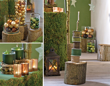 """Ideas for """"Wisdom in the Woods"""" Lobby Display"""