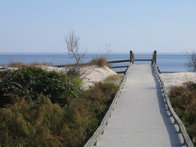 "This boardwalk was constructed for cameras crews filming scences for the movie ""Glory,"" featuring Matthew Broderick, Morgan Freeman,  Denzel Washington.  Mr. Washington won Best Supporting Actor for his role inthe film."