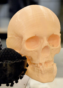 HIV Virus model and a Skull that was recreated from fragments found at a crime scene